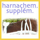 Harnachement supplementaire