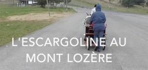 l'Escargoline sur le Mont Lozère