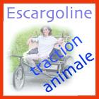 Escargoline